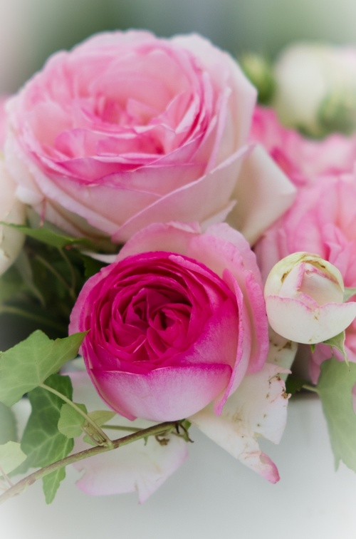 Bridal bouquet (1690 visits) Wedding pictures | Bridal bouquet